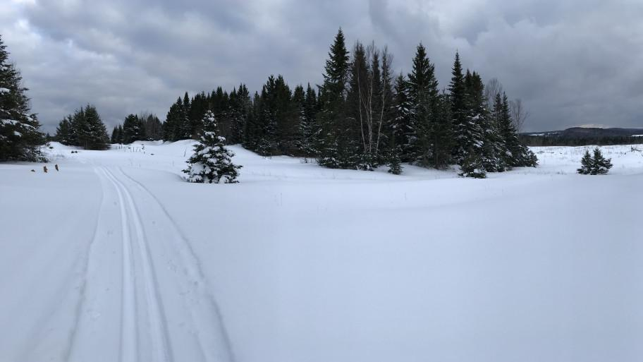 Cross-country skiing path